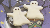 protein ghosts