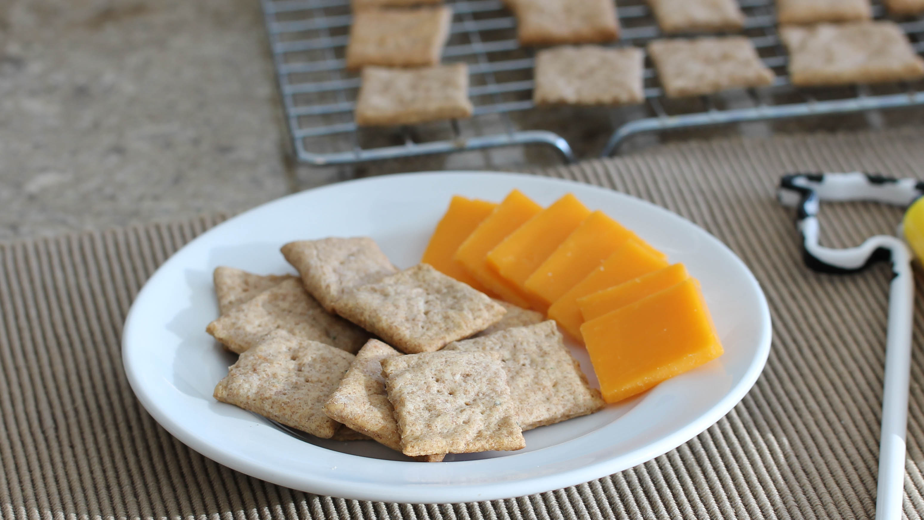 Protein Crackers made with BiPro whey protein powder