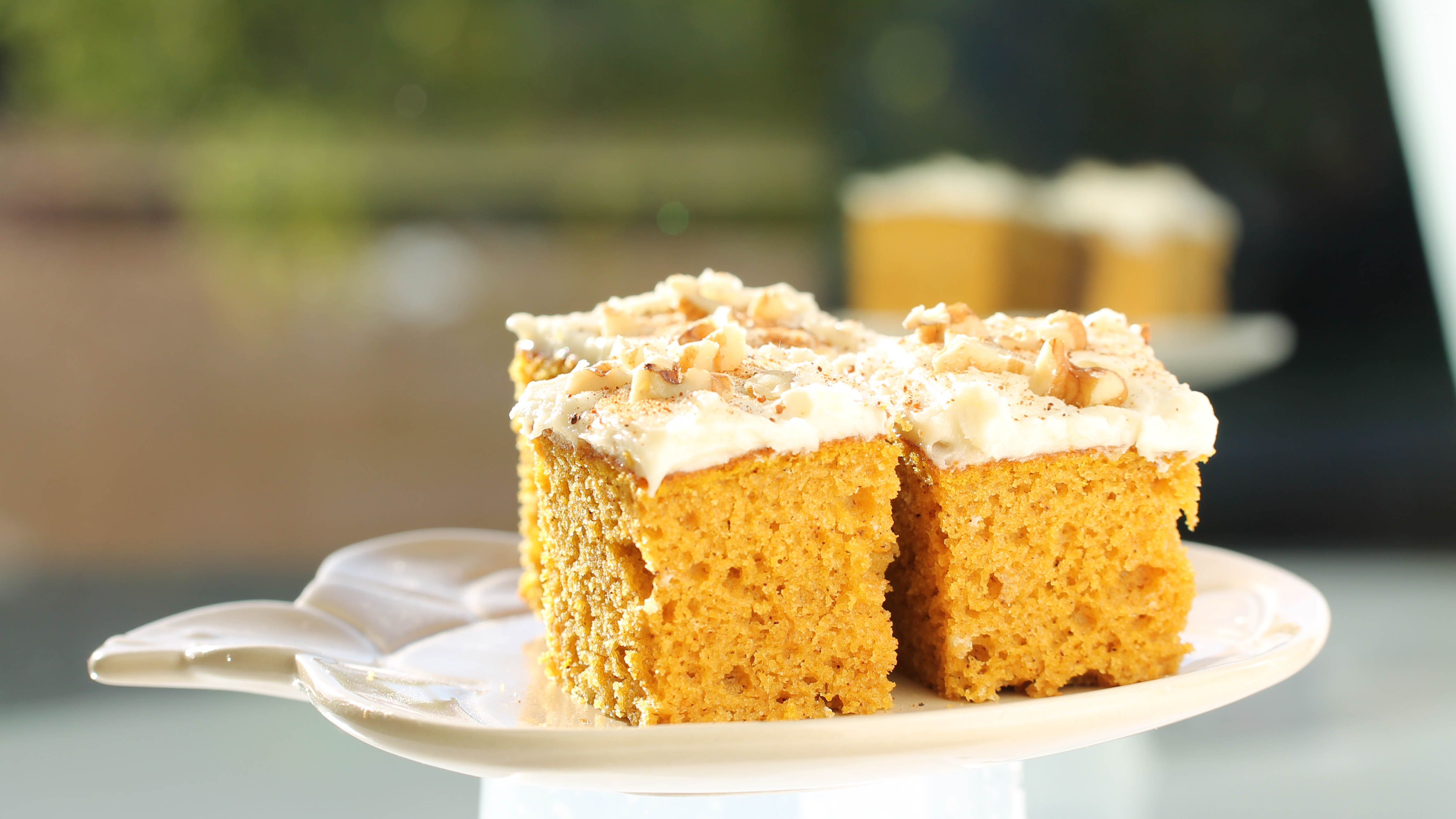 Pumpkin Bars Made With BiPro Protein Powder